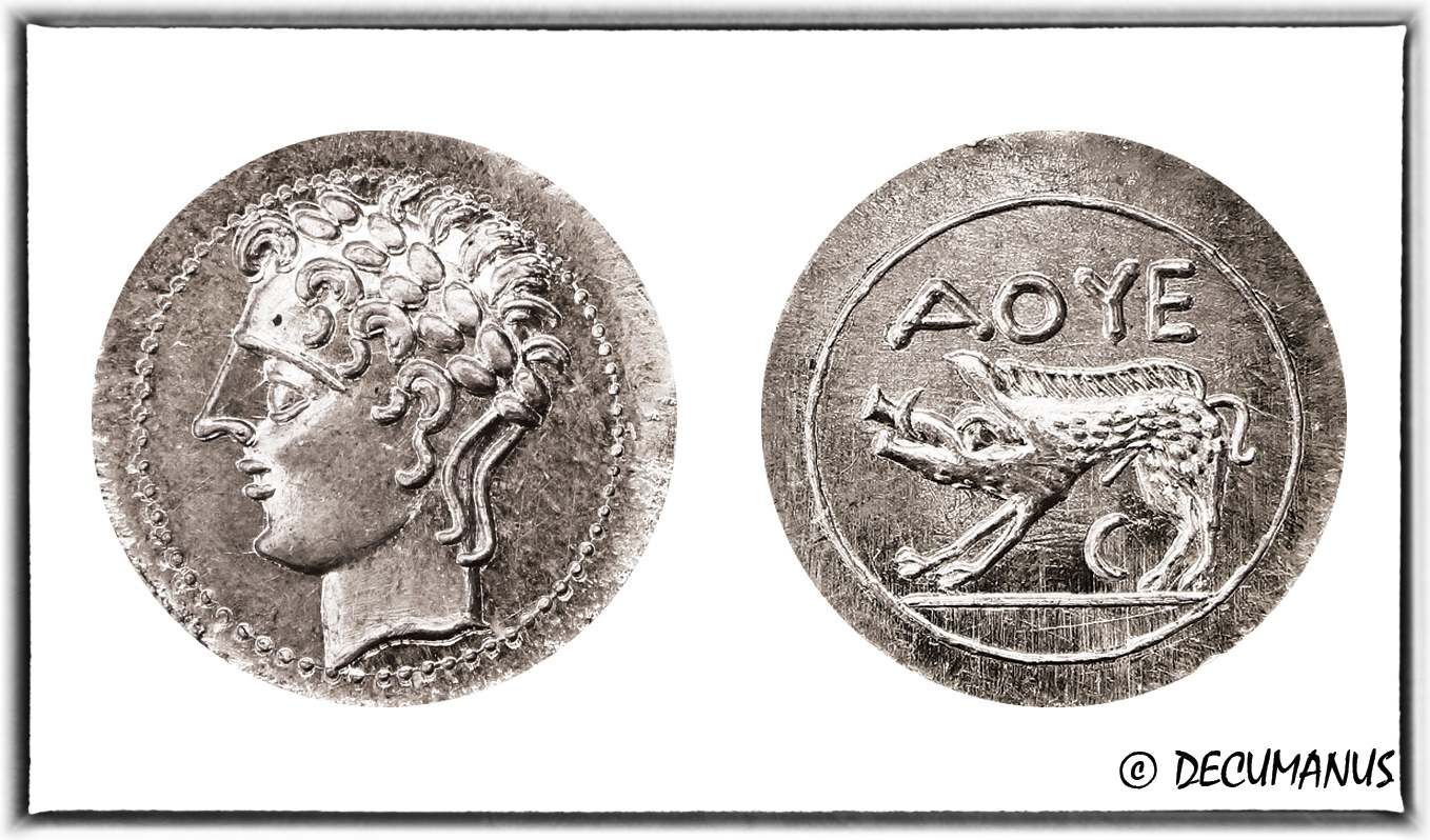 DRACHME D'AVIGNON AU SANGLIER - REPRODUCTION