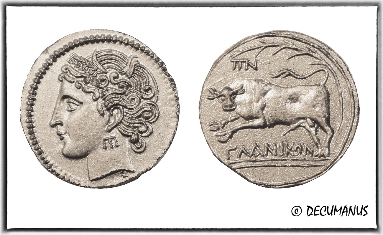 DRACHME DE GLANUM AU TAUREAU - REPRODUCTION