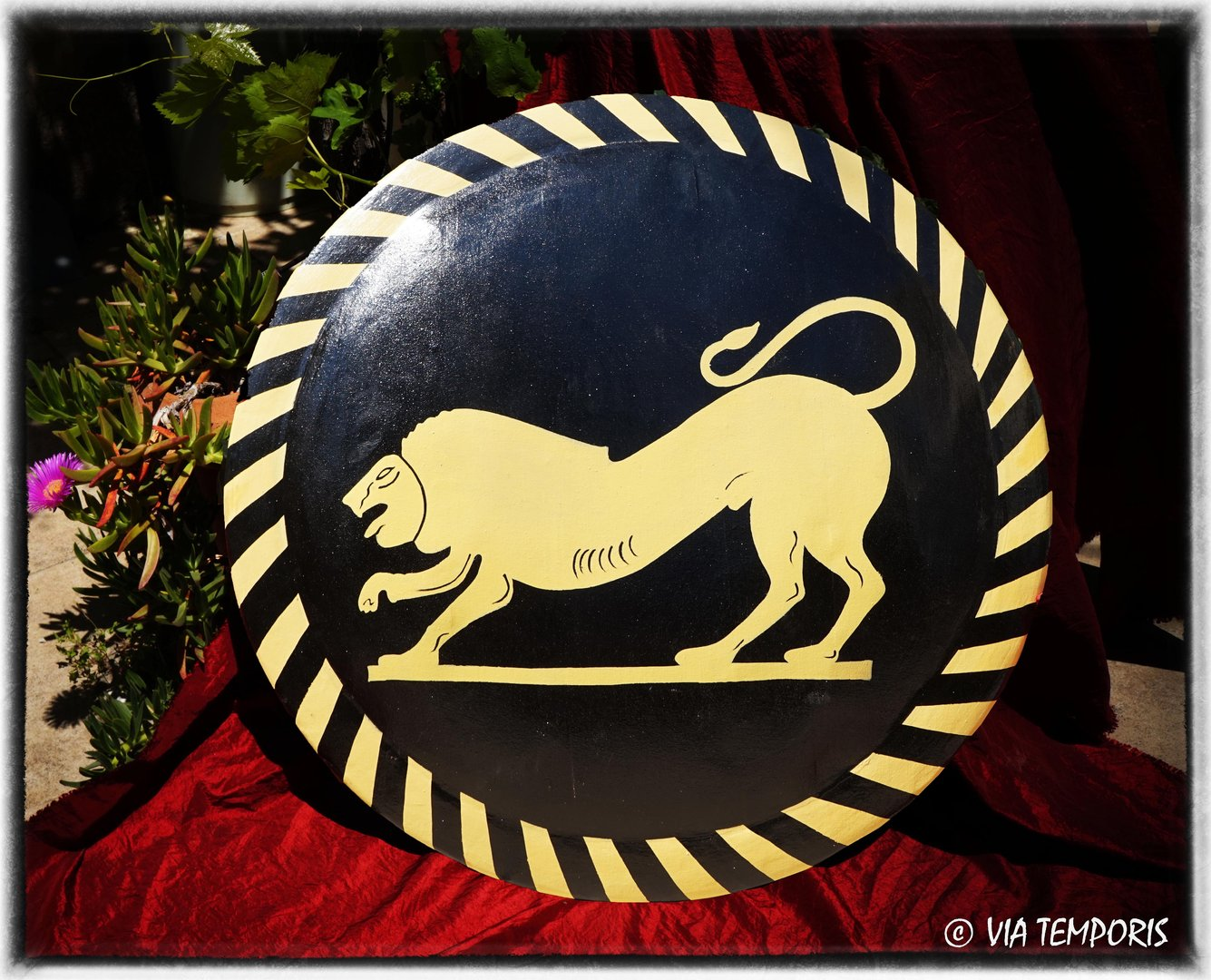 GREEK SHIELD - LION DECORATION