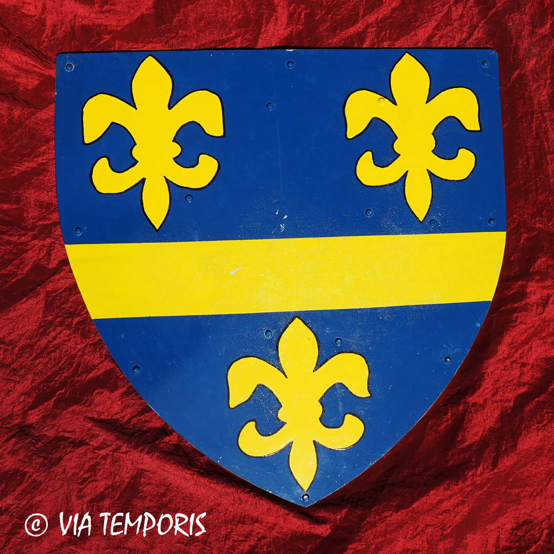 MEDIEVAL SHIELD - ROYAL FLEURS DE LIS II