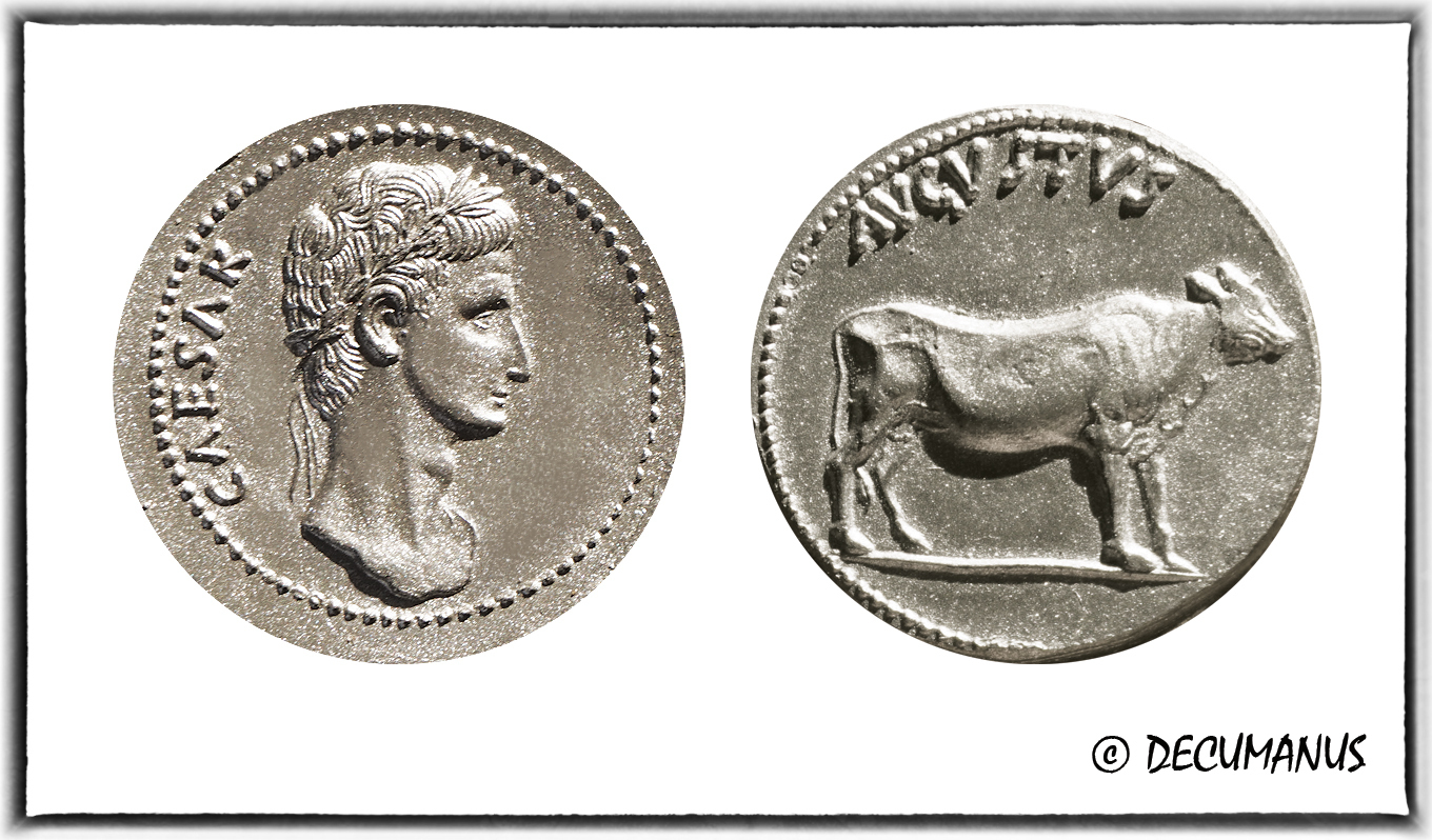 DENARIUS OF AUGUSTUS WITH THE BULL - REPRODUCTION
