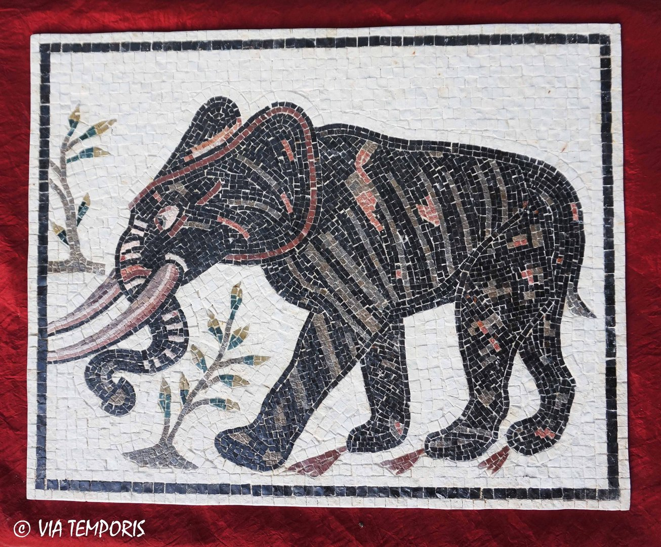 ROMAN MOSAIC - ELEPHANT WALKING TO THE LEFT